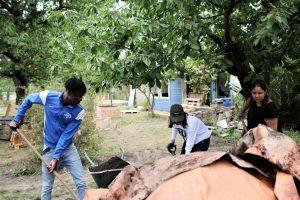 Arbeitseinsatz im SALVIA-Garten @ SALVIA-Bildungsgarten