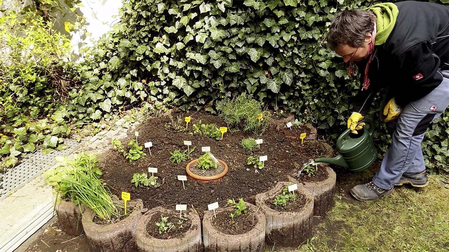 Sabine gießt ein neu gestaltetes Pflanzenbeet