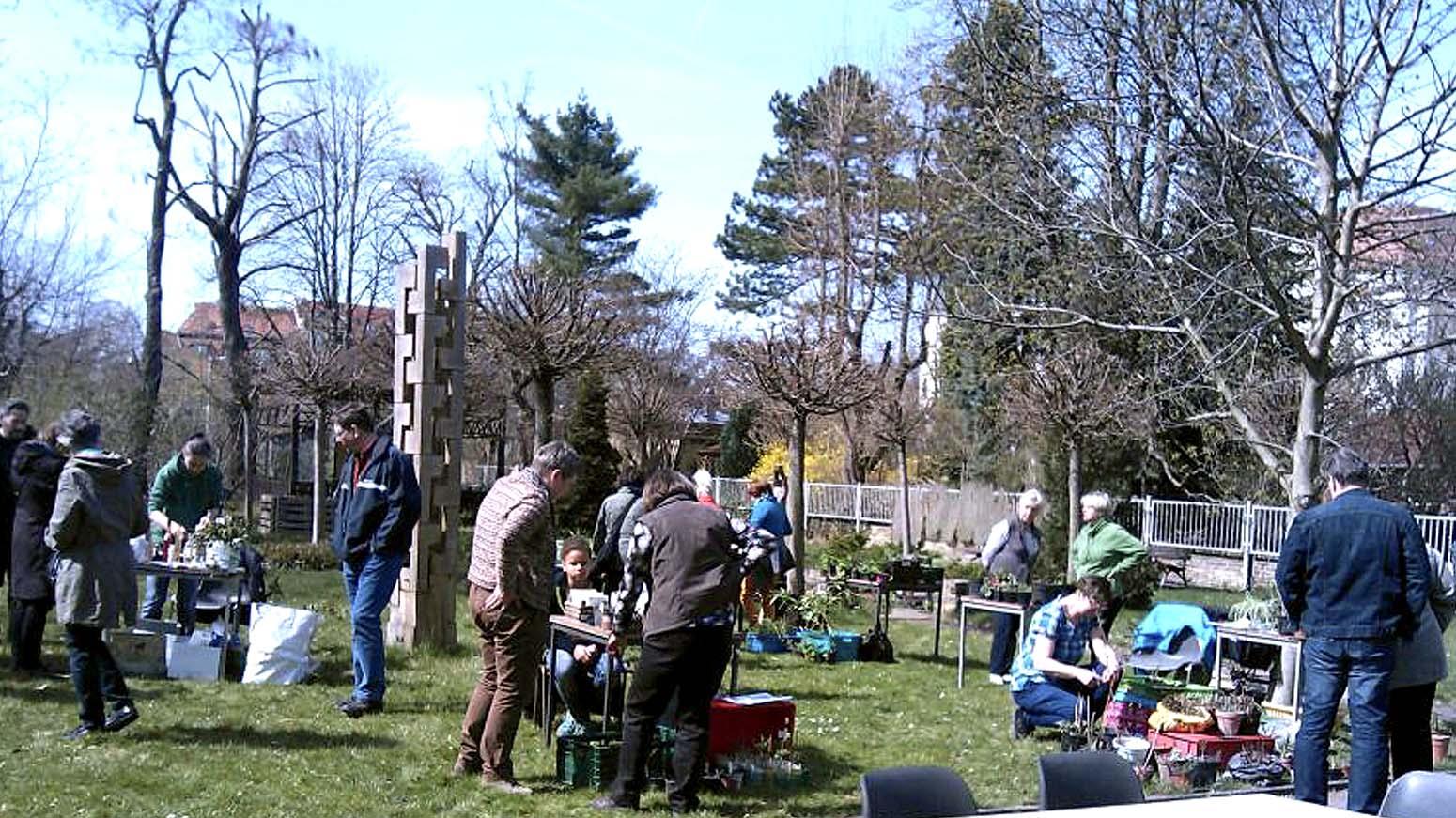 Auf einer grünen Hinterhofwiese stehen Stände, die Samen und Jungpflanzen präsentieren. Menschen laufen umher und stehen neugierig an den Tischen.