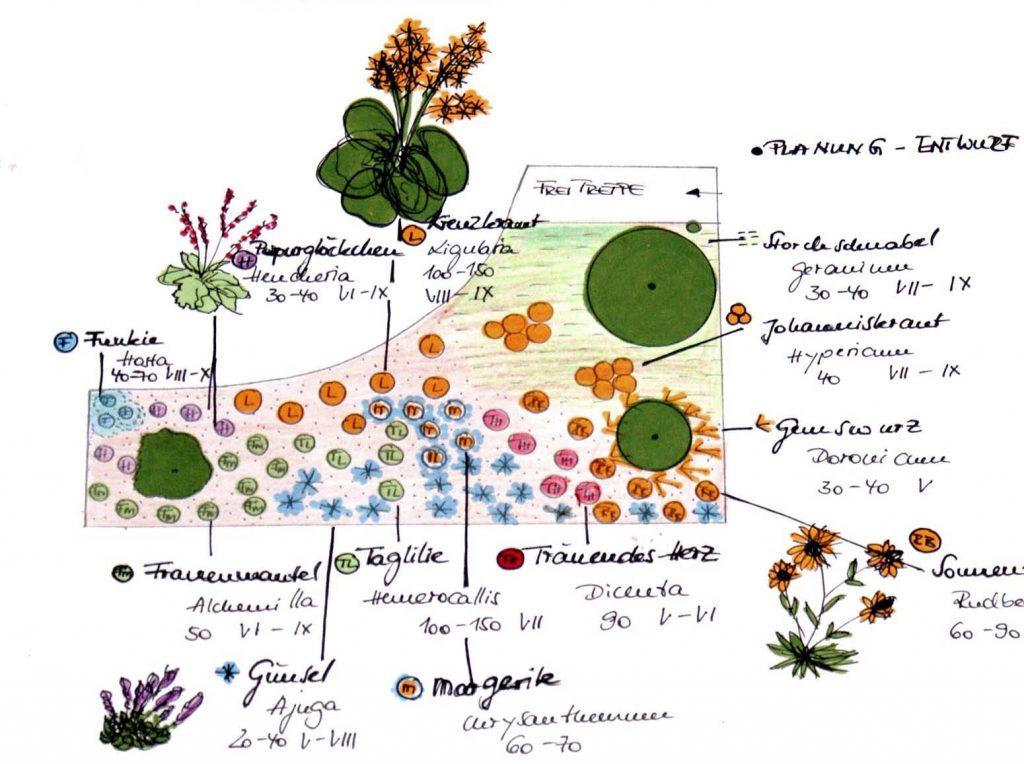 Farbige Skizze für eine Gartengestaltung
