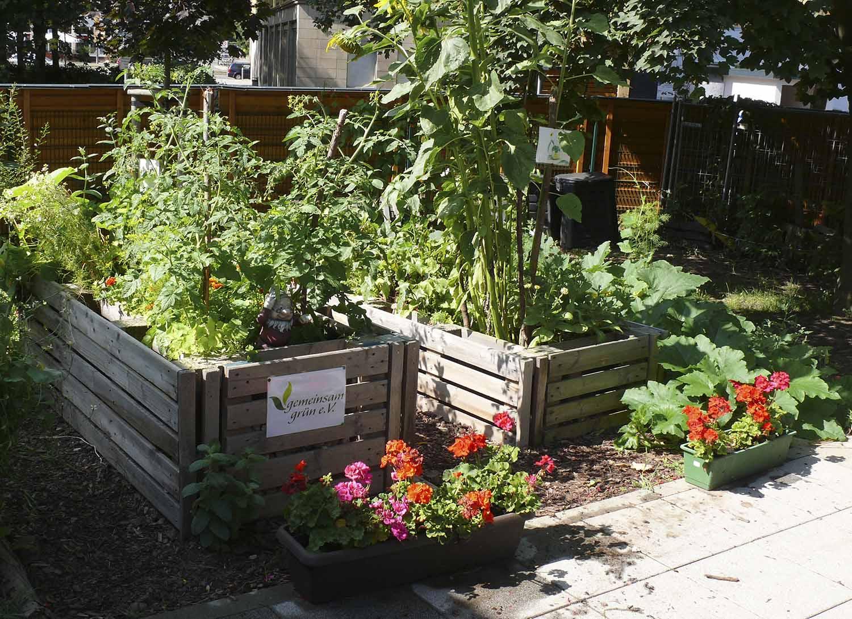 Gartenansicht mit dicht bewachsenen Hochbeeten