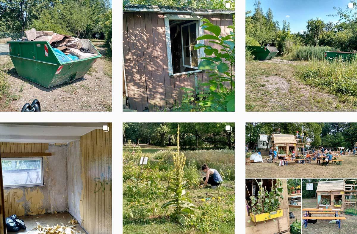 Bilderquerschnitt – 6 Bilder zeigen Eindrücke von Menschen, die sich im SALVIA-Bildungsgarten beschäftigen